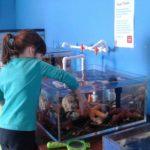 Port Alberni Homeschool Group